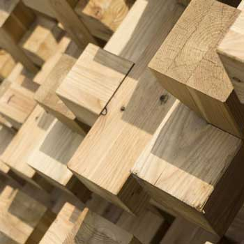 Expo Milano 2015 materials tour: wood
